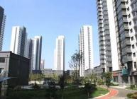 联安·金雀新城